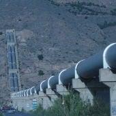Desde ASAJA Alicante pedimos a Transición Ecológica que aclare que los problemas ambientales del Tajo no se deben al agua que se deriva al sureste, como han querido hacer ver, y no son culpa de los agricultores
