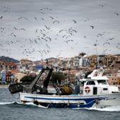 Pesca en LA Vila Joiosa