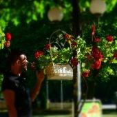 David Navarro ha abierto El Buen Jardinero en la calle Porvenir