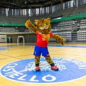 El Ciutat de Castelló se moderniza para acoger el Mundial de Balonmano femenino 2021.
