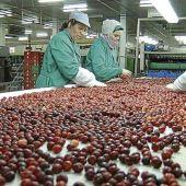 Los beneficios de Cooperativas Agroalimentarias Extremadura sube más de un 4%