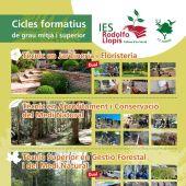 Ciclos formativos del IES Rodolfo Llopis