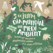 Salidas guiadas y un taller sobre Posidonia para celebrar el Día Mundial del Medio Ambiente en Ibiza