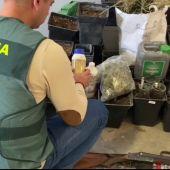 Desmantelado un cultivo 'indoor' de marihuana en la provincia