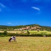 El campo menorquín reivindica la obtención de un rédito turístico.