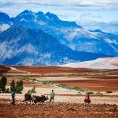 Trabajando las tierras peruanas