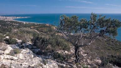 Playa El Torn (Hospitalet de l'Infant, Tarragona)