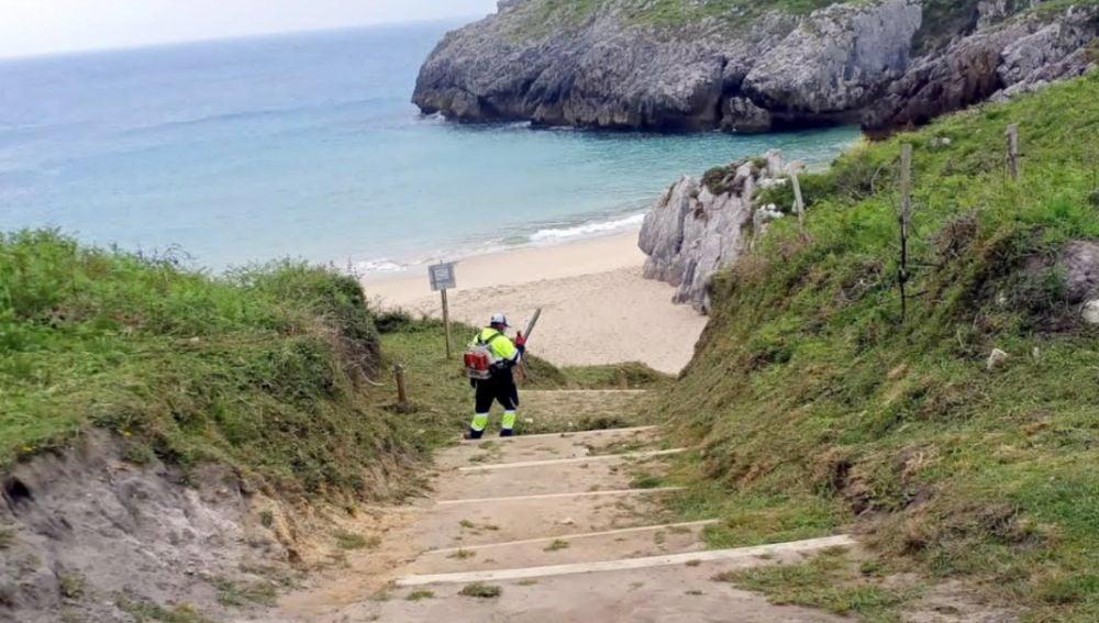 Se está interviniendo en las playas del concejo