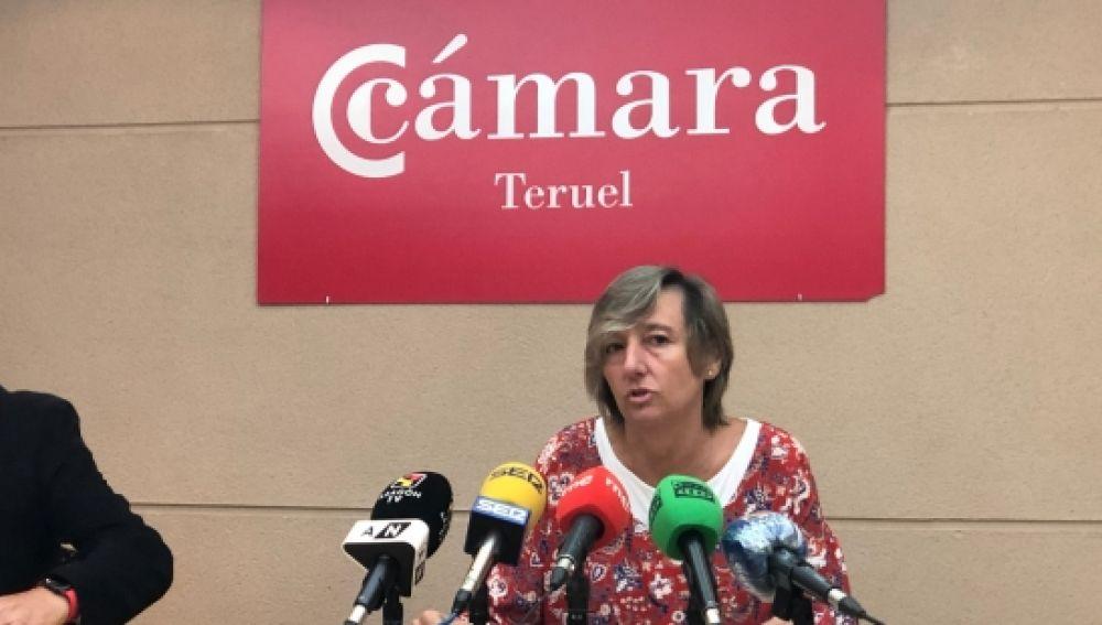 Antonio Santa Isabel y Eva Fortea presentan las ayudas al comercio turolense