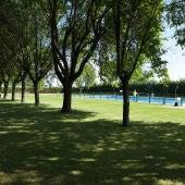 ¿Cuándo se abre la piscina municipal de Argamasilla de Alba?