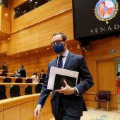 Javier Maroto, portavoz del PP en el Senado