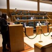 El parlamento aprueba la ley que busca garantías jurídicas en su gestión de la pandemia
