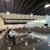Pleno del Ayuntamiento de Elche del mes de junio.