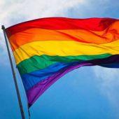 El Día del Orgullo Gay se celebra cada año el 28 de junio y consiste en una serie de eventos que los distintos colectivos realizan públicamente