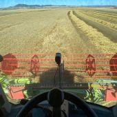 Los agricultores turolenses empezaron a cosechar la semana pasada