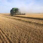 La campaña de cereal está a punto de finalizar en Ciudad Real