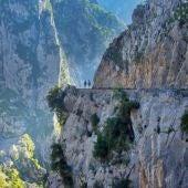 Cabrales mejora el plan de movilidad en el entorno de los Picos de Europa