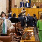 El presidente andaluz, Juanma Moreno (centro al fondo) y varios diputados buscando una rata que ha irrumpido este miércoles en el salón de plenos del Parlamento andaluz