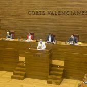 Ana Barceló en Les Corts