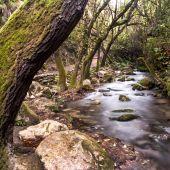 Entorno del sendero del Majaceite