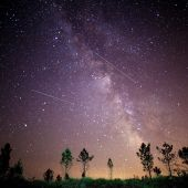 Perseidas: Hacia dónde hay que mirar y cuál es la mejor hora para ver la lluvia de estrellas hoy