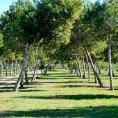 """Presentada una moción para denominar el parque Lo Albentosa como área recreativa """"José Eduardo Gil Rebollo"""""""