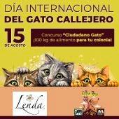 Concurso Ciudadano Gato