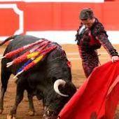 La Unión de Criadores de Toro de Lidia anuncia acciones legales contra la alcaldesa de Gijón