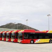 Autobuses TIB