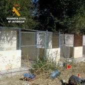 Detenidas dos personas por la muerte y maltrato de los perros de la residencia de El Álamo