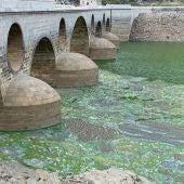 El Parque Nacional de Monfragüe afectado por los desembalses de Alcántara