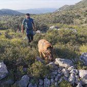 Localizan el cuerpo sin vida del cazador desparecido a finales del año 2020 en Catí