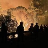 El incendio de Sierra Bermeja obliga a desalojar a 400 vecinos