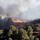 Más de 400 desalojados por un incendio forestal en Sierra Bermeja
