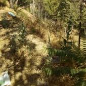 Los vecinos de Teruel se quejan con frecuencia de la acumulación de suciedad en las laderas