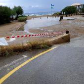 El temporal provoca en Santa Eulària (Ibiza) la caída de árboles
