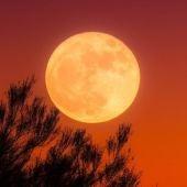 Luna de otoño